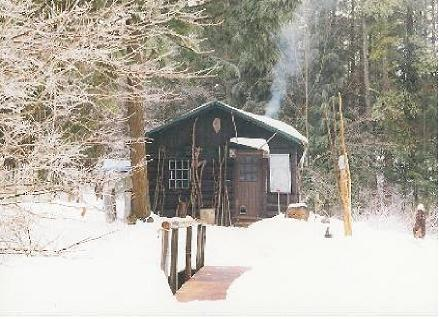 http://thebasinblog.files.wordpress.com/2011/01/winter_cabin.jpg